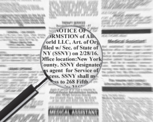 ny-llc-publication